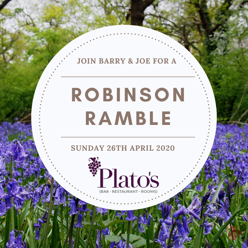Robinson Ramble April 26th with a meadow of blue bells in the background